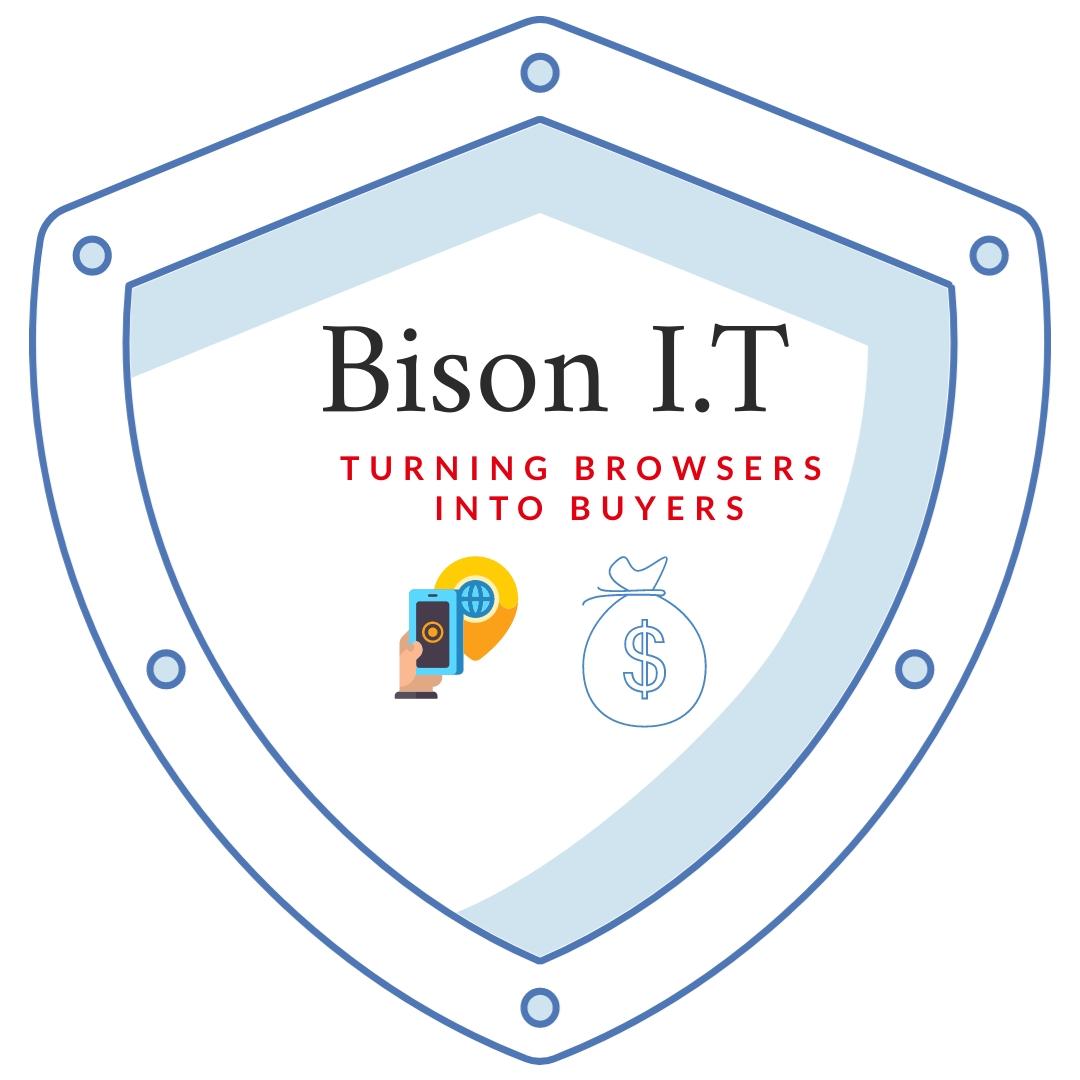 Bison I.T Solutions, a chatbot developer