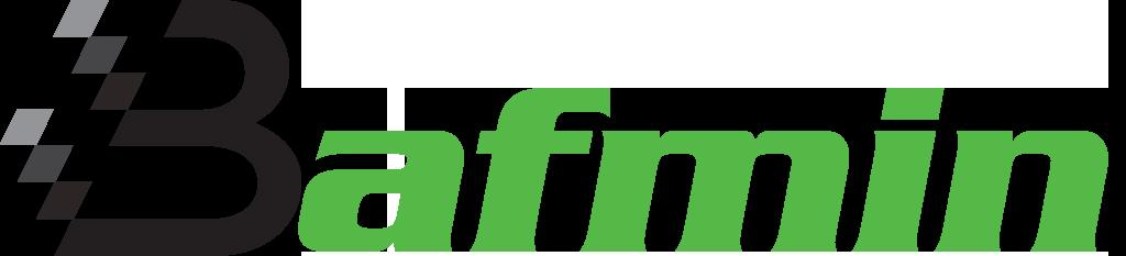 Bafmin LLC, a chatbot developer