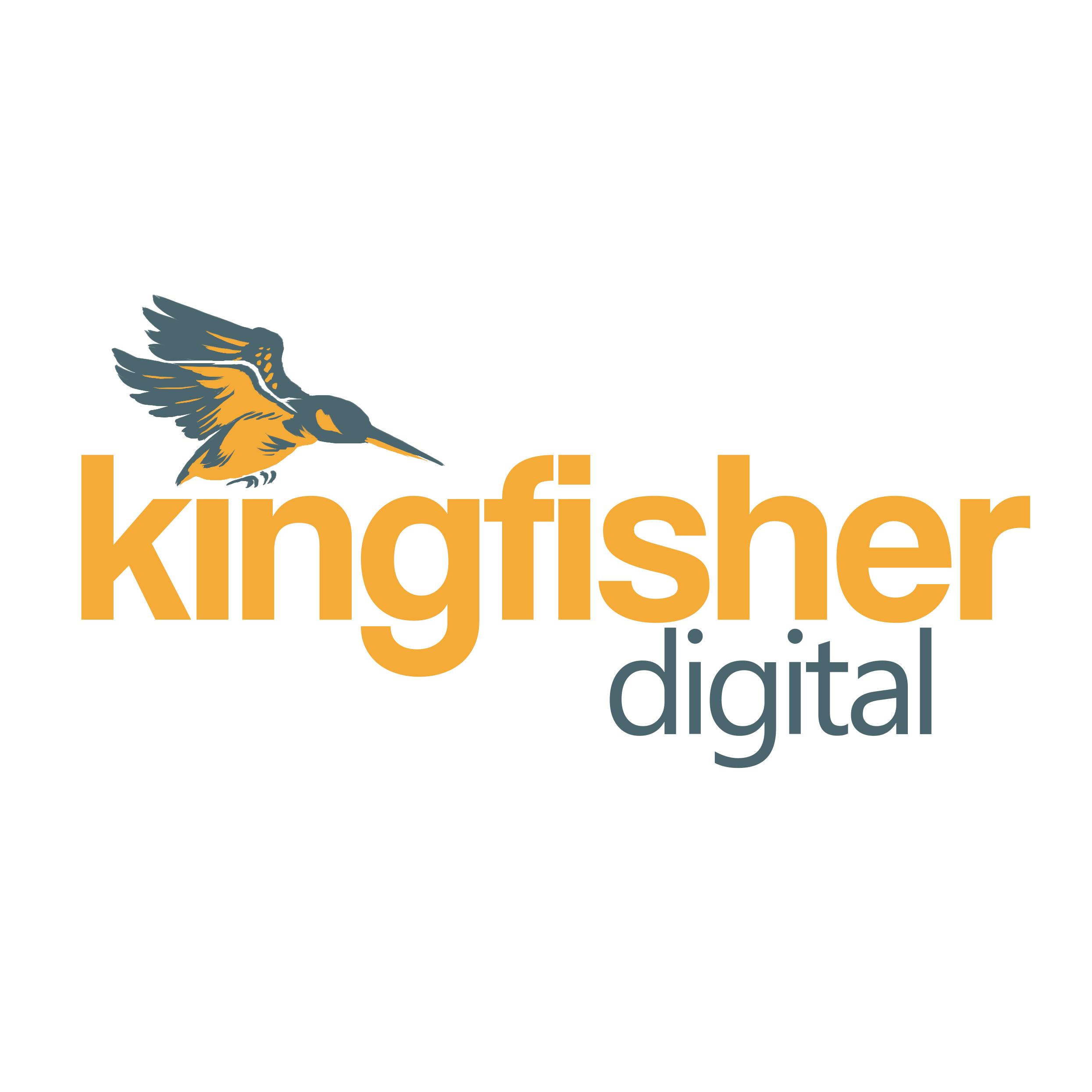 Kingfisher Digital, a chatbot developer