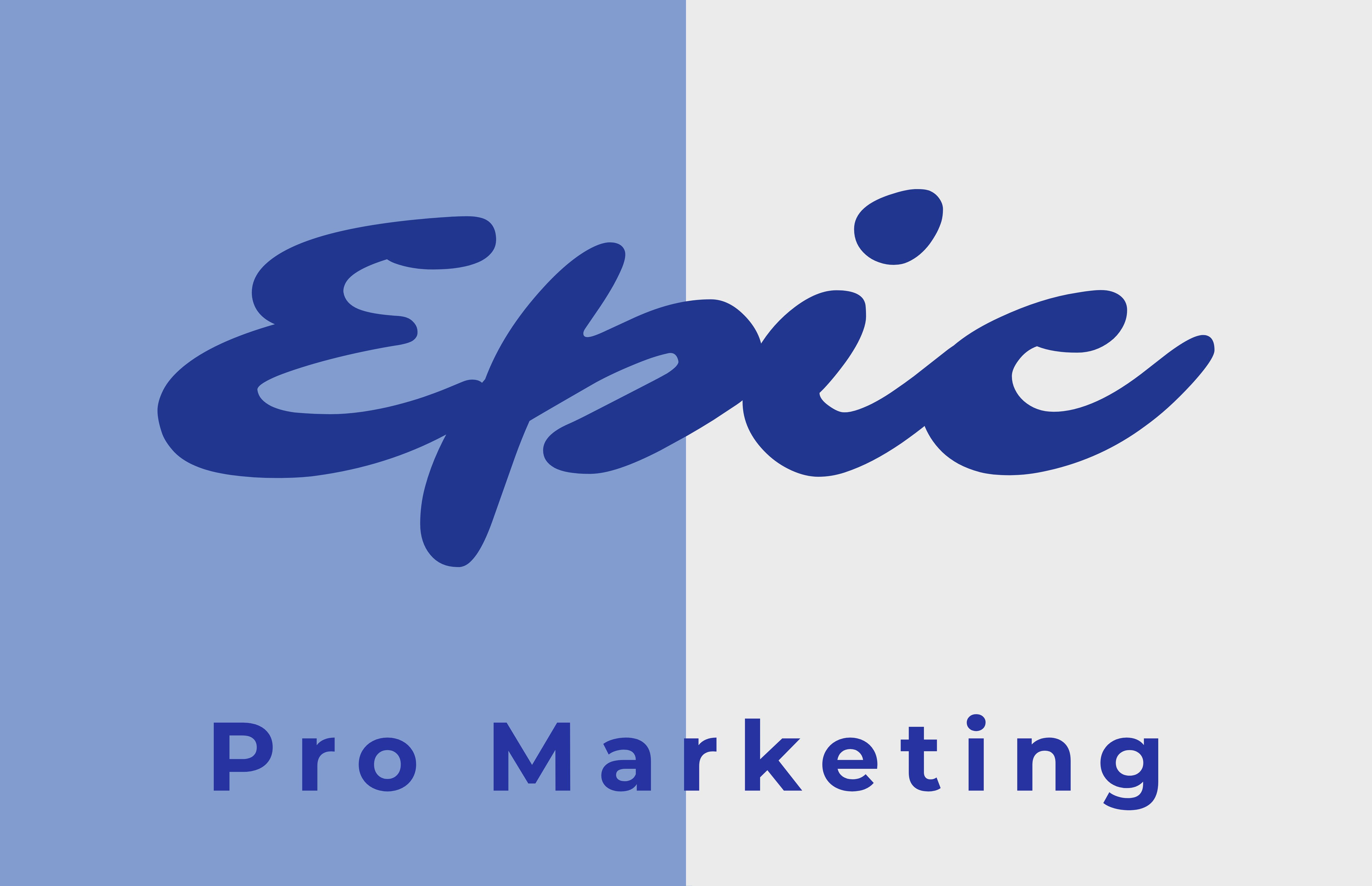 Epic Pro Marketing, a chatbot developer
