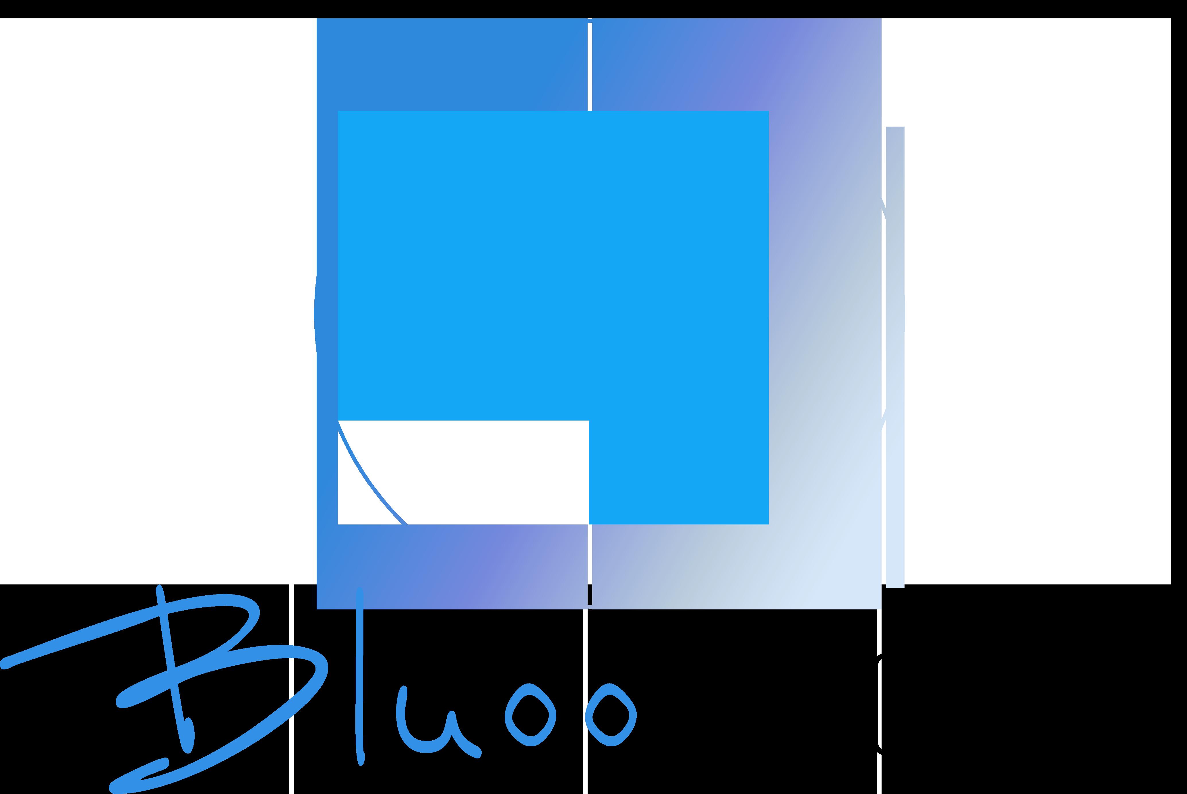 Bluoo Digital, a chatbot developer