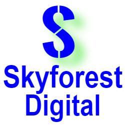 Skyforest Digital, a chatbot developer