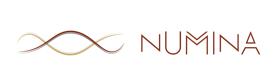 Numina, a chatbot developer