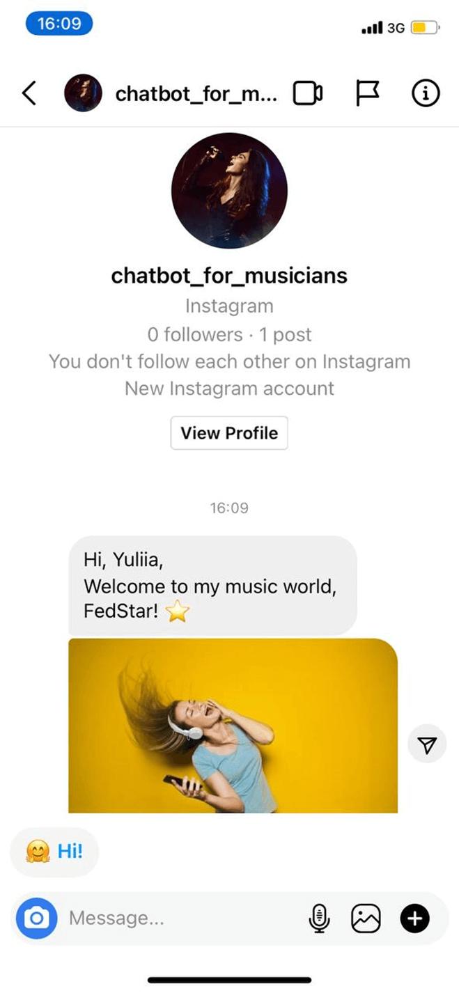 Instagram Sales Bot for Musicians/Artists bot screenshot