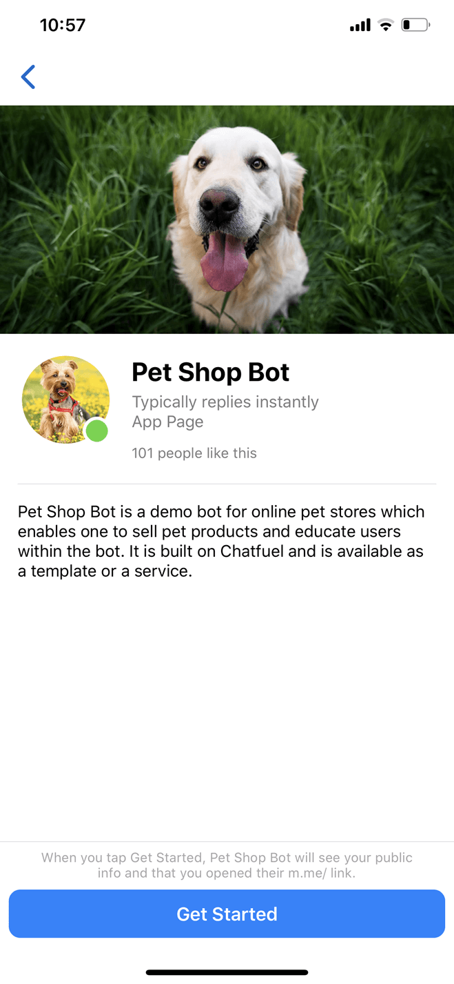 Modelo de bot para e-commerce de pet shops